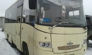 маз 256070 автобус